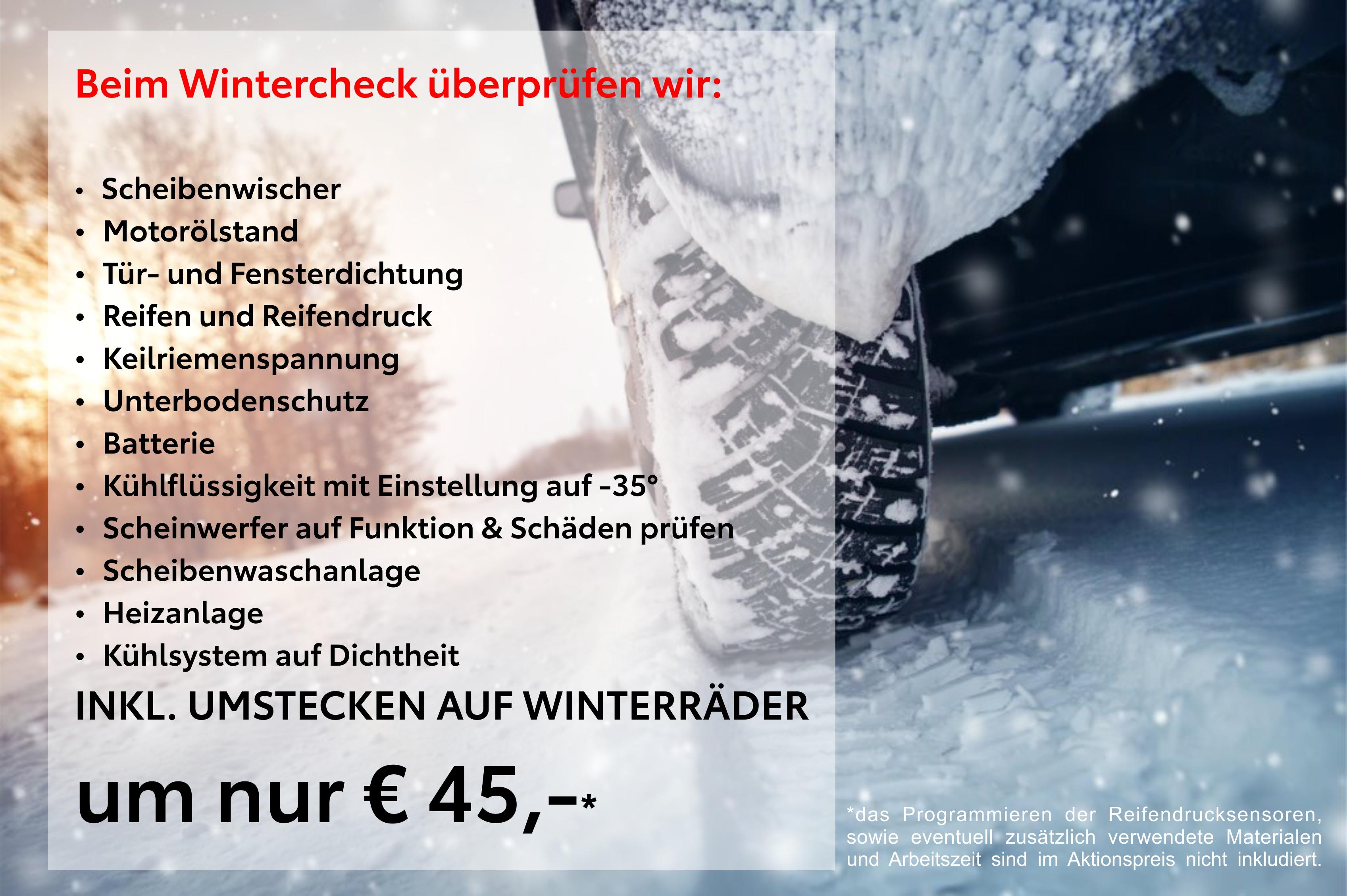 Bild Wintercheck inklusive Räder umstecken bei Toyfl um nur € 45,--